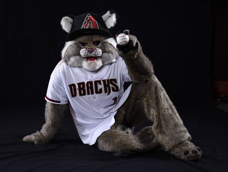 Baxter the Bobcat mascota arizona diamondbacks beisbol mlb