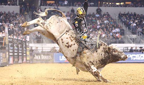 La NFL encuentra su antecedente en el Rodeo Americano