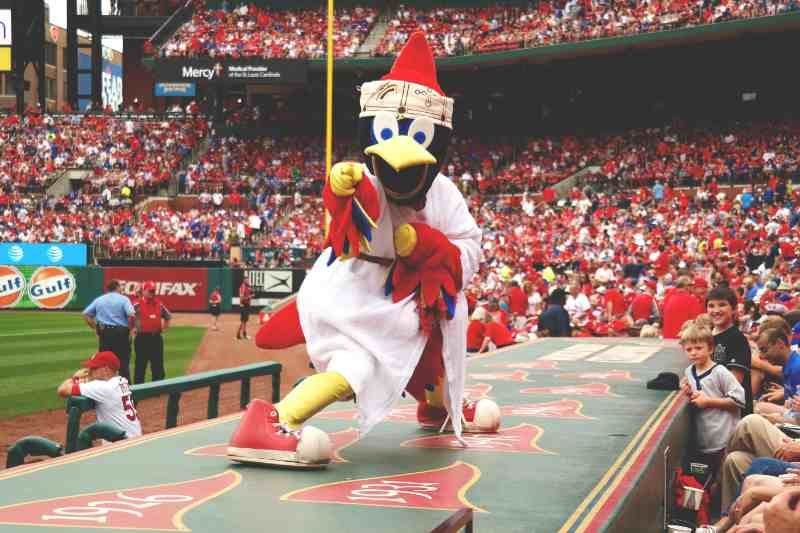 mascota Freebird saint louis cardinals mlb en español beisbol mascota historia