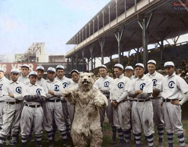 """dead ball era los Cubs de 1908 y su mascota, al parecer lo de """"dead"""" tambien tambien se aplico en este caso. (foto cortesía de @baseballincollor)"""