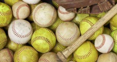 mi beisbol softball