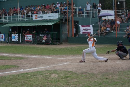 liga argentina de beisbol