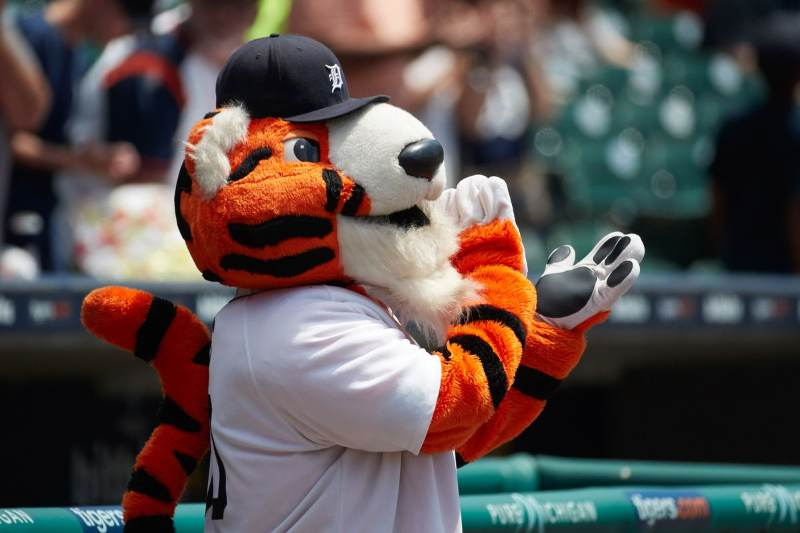 detroit tigers mlb en español beisbol historia paws mascota